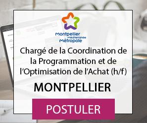 Chargé de la Coordination de la Programmation et de l'Optimisation de l'Achat (h/f) - Montpellier Méditerranée Métropole